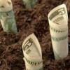Asesoría legal de inversión en República Dominicana