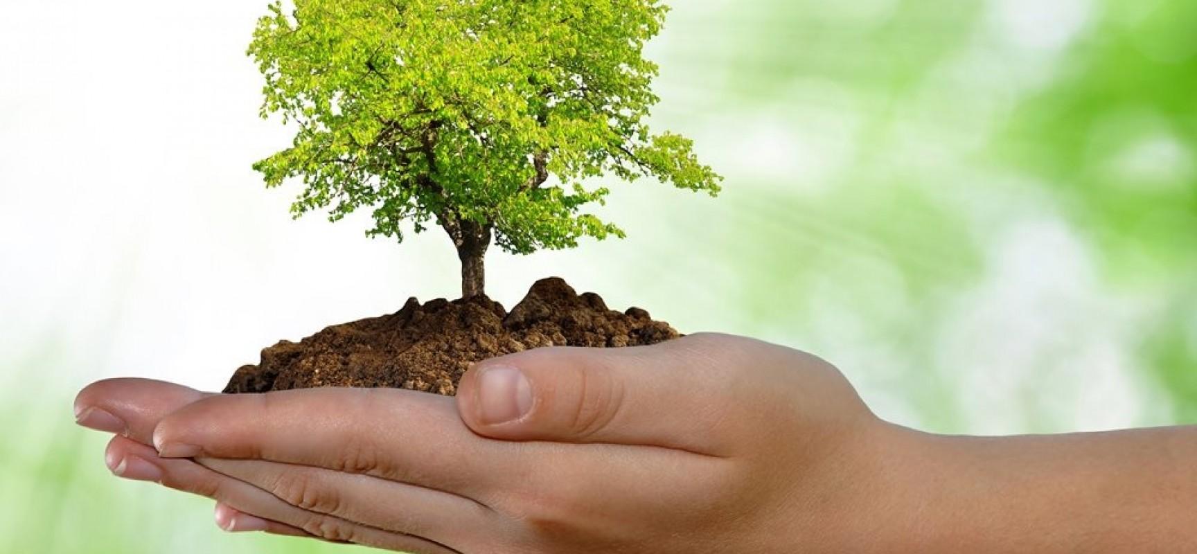 Resultado de imagen para proteccion de los recursos naturales